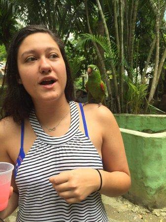Cabarete, Dominicaanse Republiek: Annie with kico