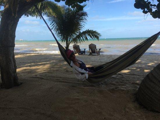 Maya Beach Hotel Bistro : photo0.jpg