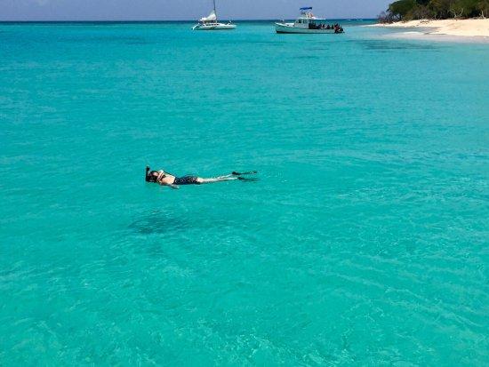 Christiansted, St. Croix: Snorkel practice on Turtle Beach on Buck Island