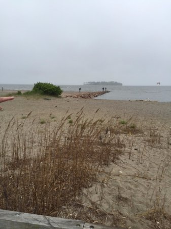 Milford, CT: Sea oats and jetty