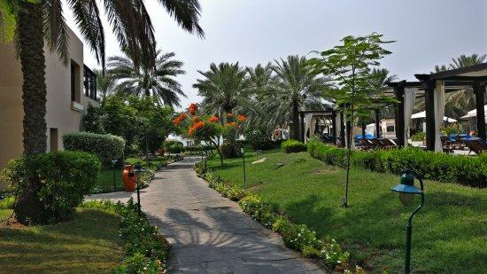 Miramar Al Aqah Beach Resort: PSFix_20170614_095756_large.jpg