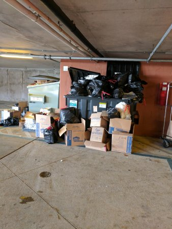 Portofino Island Resort: Rat behind the dumpster/Very Smelly