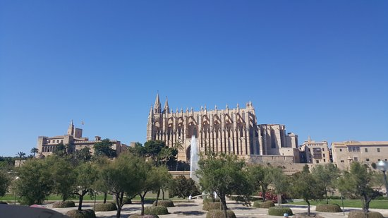 City Sightseeing Palma de Mallorca : 20170612_170426_large.jpg