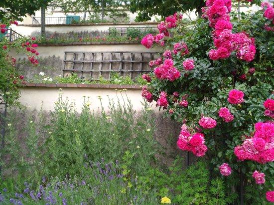 schöner garten am hang unterhalb der burg mit vielen stufen ... - Garten Am Hang