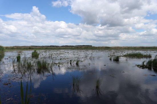 Kiskunsagi Nemzeti Park