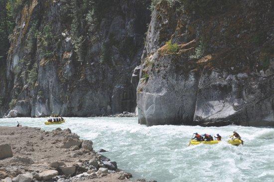 Squamish, Canada: Elaho Whitewater Experience