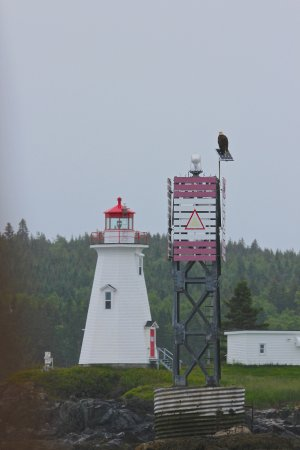 Saint Andrews, Canada: Eagle and Lighthouse! Capt. Chris grew up around the corner from here