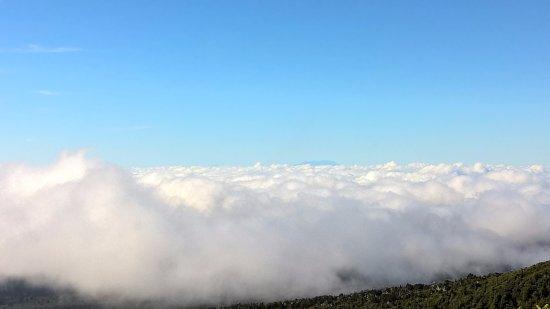 Taranaki Region, New Zealand: วิวทะเลหมอก มีราเพตัวอยู่มุมขวา