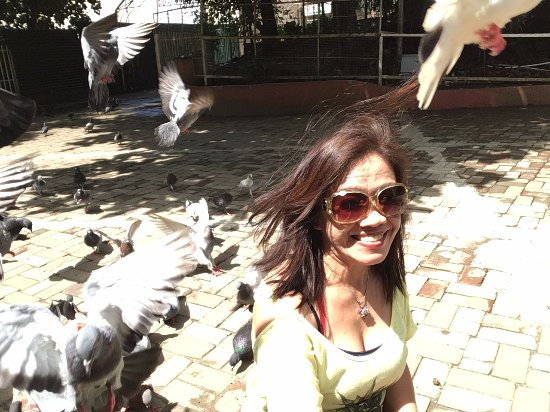Davao City, Filippinerna: playing with the pigeons!