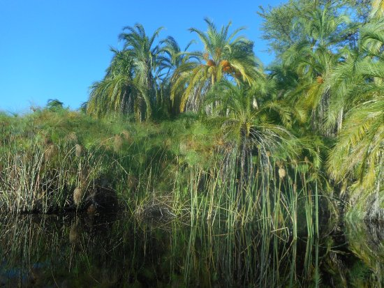 Maun, Botsuana: okavango delta