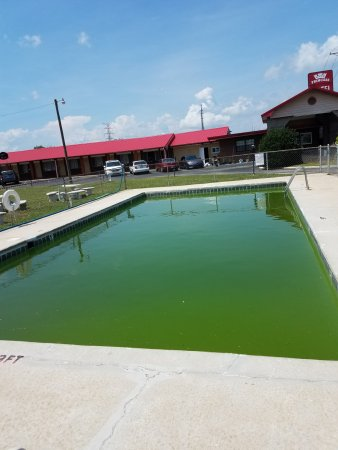 Princess Motel of Maryville: Pool Needs Cleaning