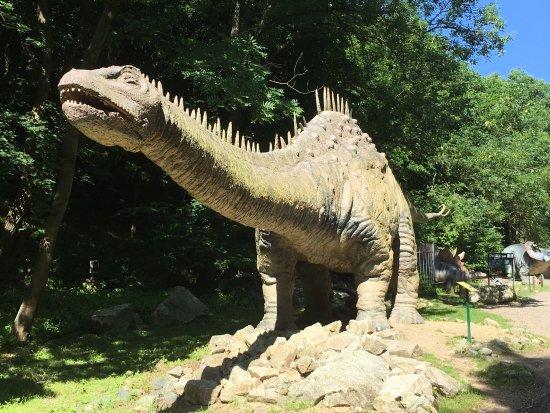 DinoPark Bratislava: photo4.jpg