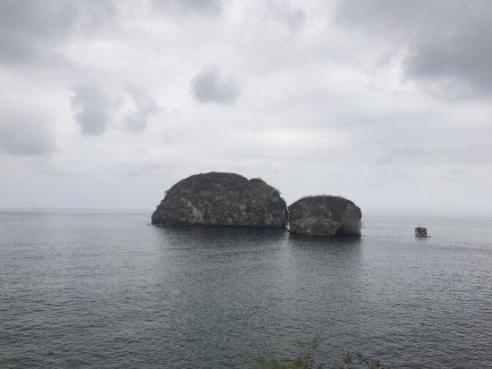 Vallarta Adventures: photo7.jpg