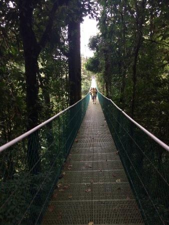 Sky Adventures - Arenal Park : photo0.jpg