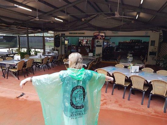 Malanda, Australia: Ticket office, dining area and souvenir shop with the souvenir poncho.