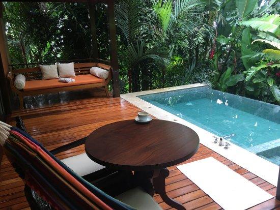 Nayara Resort Spa & Gardens: photo1.jpg
