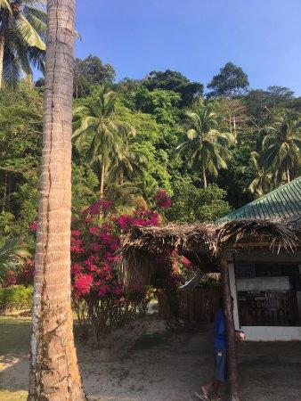 Port Barton, Philippines : photo4.jpg