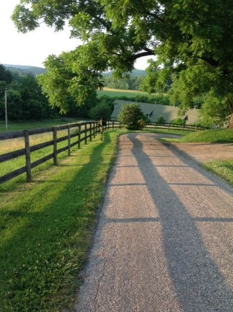The Inn at Mount Vernon Farm: Morning light, walking toward the barn