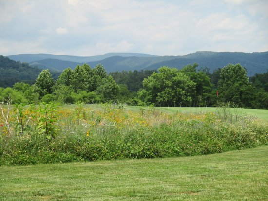 The Inn at Mount Vernon Farm: Golf course with wildflower rough