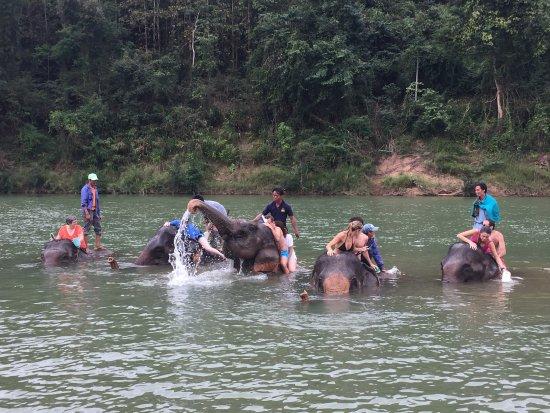 Ban Xieng Lom, Laos: Baño de elefantes