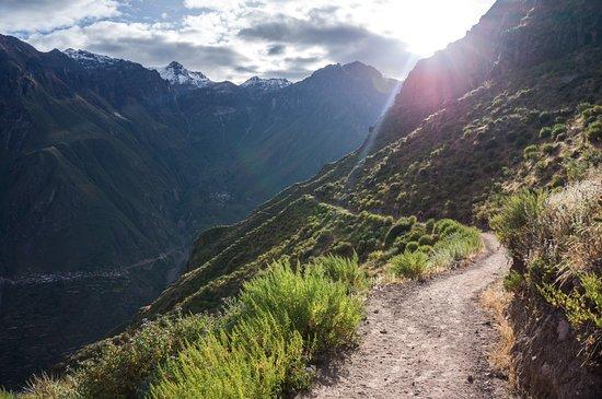 Cañón del Colca: First day Colca Canyon
