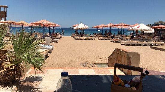 Viva Beach: photo1.jpg