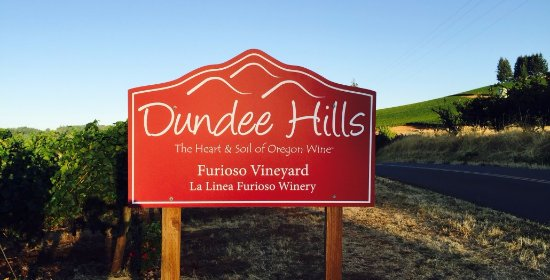 Award-winning Pinot noir from the famed Dundee Hills AVA - Our Dundee Estate vineyard