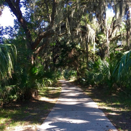 Days Inn & Suites Jekyll Island: Along the walking/bike path on the west side of the island