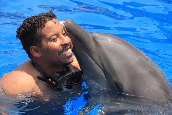 Dolphin Discovery Puerto Vallarta: photo3.jpg