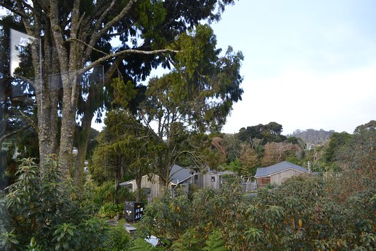 Landscape - Picture of Miro Cottage, Half Moon Bay - Tripadvisor