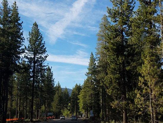 Tahoe City, CA: Beautiful Views