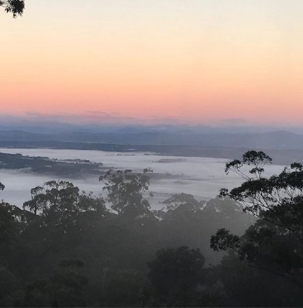 Avocado Sunset Bed and Breakfast: Sunrise over the hinterland in winter
