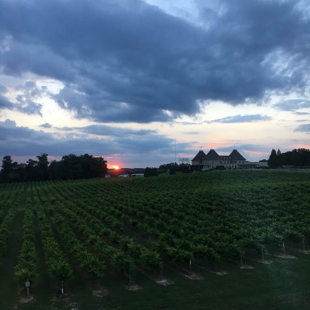 Braselton, GA: Sunset over the vineyards and winery.