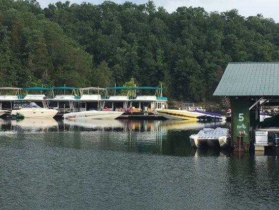 Albany, KY: This place has a prime location/setting great marina poorly cared for lodge and cabins they must