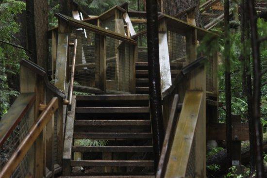 North Vancouver, Kanada: stairs
