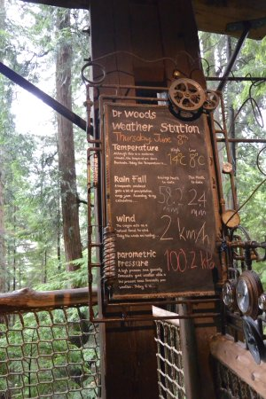 North Vancouver, Canada: treetop weather station