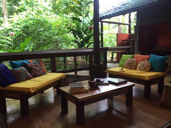 Puerto Viejo de Sarapiqui, Costa Rica: Cinco Ceibas Reserve