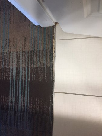 Port Wentworth, Τζόρτζια: Hall carpet pulling away from bathroom tile.