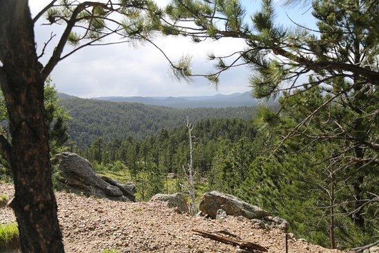 Breezy Point Picnic Area
