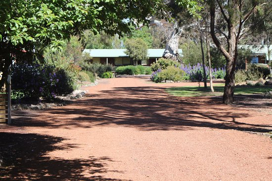 Dunkeld, Australia: Driveway leading to the cottages