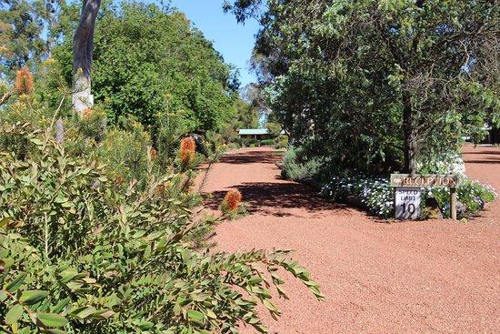 Dunkeld, Australien: Outside reception area