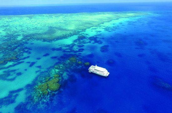 4-Day Great Barrier Reef Cruise to...