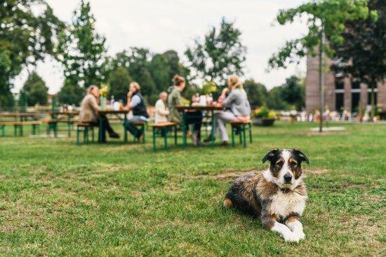 Schonwalde-Glien, Alemania: Biergarten mit Hofhund Tilly