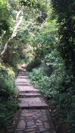 Yangtai Mountain: Nature