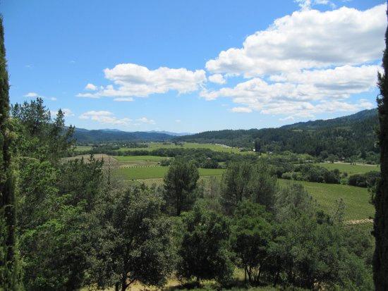 Sterling Vineyards: Views from terrace
