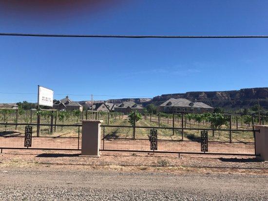 Two Rivers Winery: photo0.jpg