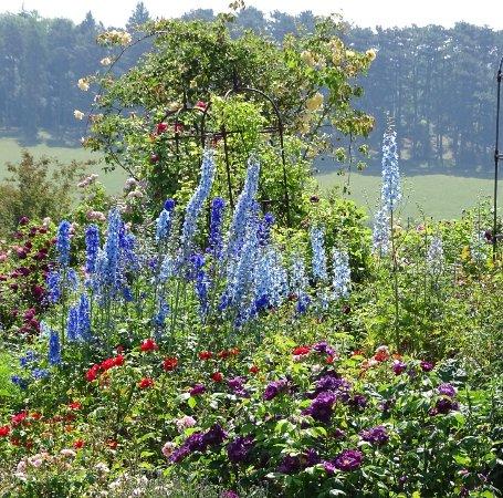 Botanischer Garten der Universität Ulm