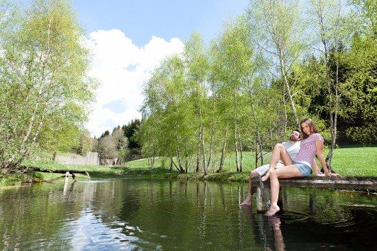 Unterweissenbach, Austria: Eigener Naturteich