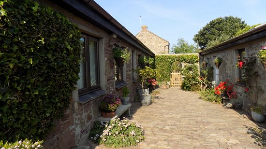 Farm Court: Jamie has transformed this 17th Century courtyard into a pretty haven of tranquillity.