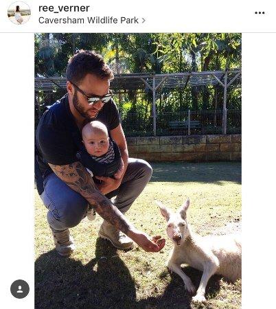 Whiteman, Australia: photo2.jpg